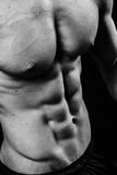 Muscular sexy torso of young sporty man with perfect abs close up. Black and white isolated on black background Royalty Free Stock Photography