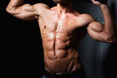 Muscular and sexy torso of young sporty man Stock Image