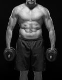 Muscular shirtless body of sportsman standing with dumbbells. Black and white. Serious powerful black and white muscular body of young sportsman standing Stock Images