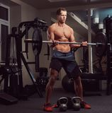 Muscular shirtless bodybuilder male lifting a barbell on a biceps in a gym. stock photography