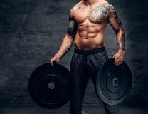 The muscular shirtless, tattooed male holds barbell weights over. Grey background Royalty Free Stock Images