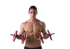 Muscular shirtless young man exercising biceps with dumbbells. Isolated on white stock images