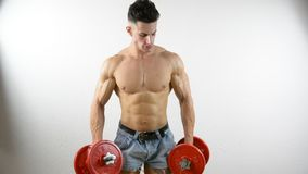 Muscular shirtless young man exercising with dumbbells stock video footage