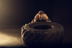 Muscular sportsman training with big tire on black with side lighting. Front view of muscular sportsman training with big tire on black with side lighting Royalty Free Stock Photo