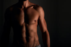 Muscular stomach with six pack abs Royalty Free Stock Photography