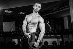 Muscular strong athletic men pumping up muscles and training in gym. Handsome bodybuilder guy doing exercises with barbell. Monoch Royalty Free Stock Images