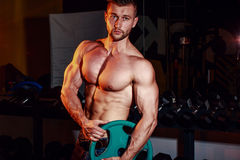 Muscular strong athletic men pumping up muscles and training in gym. Handsome bodybuilder guy doing exercises with barbell. Muscular strong athletic man pumping Stock Image