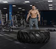 Muscular,Strong bodybuilder pushing tire in modern fitness cente stock image