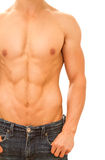 Muscular and tanned male torso. Royalty Free Stock Image