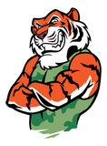 Muscular tiger posing. Vector of muscular tiger posing, suitable as a mascot, print, t-shirt etc stock illustration