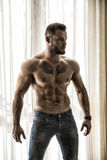 Muscular topless man standing by window Stock Image