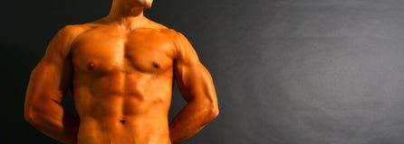 Muscular Torso Royalty Free Stock Photos