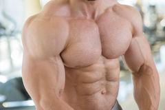 Muscular torso and arms. Bodybuilder with huge muscles. Strong man's torso. Picture of muscular torso, arms and abs Stock Photo