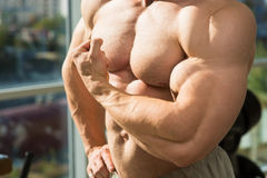 Muscular torso and arms. Stock Images