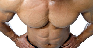 Muscular torso and pecs of male bodybuilder shot from above Royalty Free Stock Images