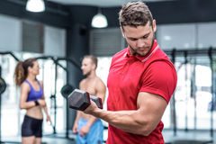 Muscular trainer lifting a dumbbell Stock Image