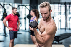 Muscular trainer lifting a dumbbell Royalty Free Stock Images