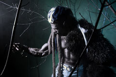 Muscular werewolf among the branches of the tree Stock Image