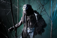 Muscular werewolf among the branches of the tree Stock Photos