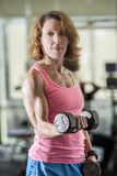 Muscular woman lifting weights Royalty Free Stock Photos