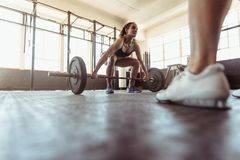 Muscular woman lifting weights. Muscular women lifting weights at a gym. Fit female athlete working out at health club stock photos