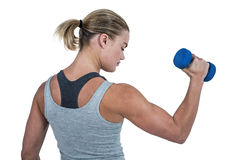 Muscular woman working out with dumbbells Royalty Free Stock Photography