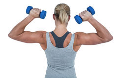 Muscular woman working out with dumbbells Stock Photos