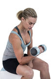 Muscular woman working out with dumbbells Royalty Free Stock Photo