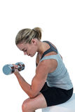 Muscular woman working out with dumbbells Royalty Free Stock Images