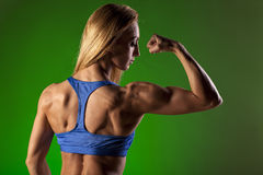 Muscular woman Stock Image