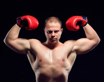 Muscular young caucasian boxer wearing boxing Stock Photography
