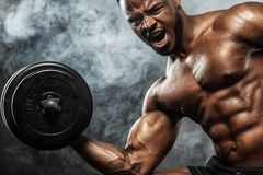 Muscular young fitness sports man workout with dumbbell in fitness gym. Athletic shirtless young sports man - fitness model with barbell in gym Stock Photography