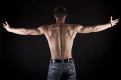 Muscular young male body on black background. Stock Images