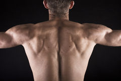 Muscular young male body on black background Stock Photos