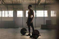 Muscular young man with barbell at gym. Man standing with heavy weights on gym floor Royalty Free Stock Images