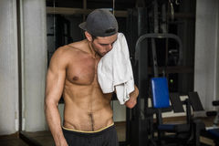 Muscular young man drying sweat with towel. Muscular young man drying sweat from his face with a towel after workout in a gym royalty free stock photo