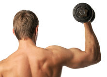 Muscular young man lifting a dumbbell Stock Images