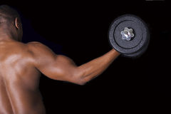 Muscular young man lifting weights Stock Photography