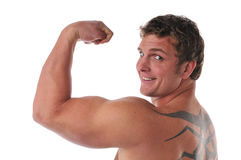 Free Muscular Young Man S Torso Stock Photos - 9260963