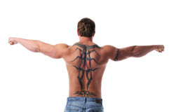 Muscular young man's torso Royalty Free Stock Image