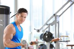 Muscular young man training Royalty Free Stock Photo