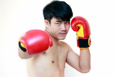 Muscular young man wearing boxing gloves. Handsome muscular young man wearing boxing gloves Royalty Free Stock Photography