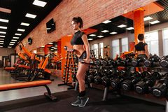 Muscular young woman with beautiful body doing exercises with dumbbell. royalty free stock photography