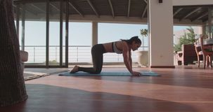 Muscular young woman doing push ups at home stock video footage