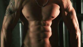 Muscules musculares de la demostración del hombre en el torso almacen de metraje de vídeo
