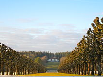 Muse Argonne American Cemetary. French countryside tree path Royalty Free Stock Images