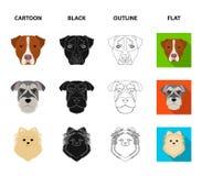 Museau de différentes races des chiens Poursuivez la race Stafford, Spitz, Risenschnauzer, icônes réglées de collection de berger Illustration Stock