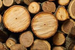 Museau drôle de bois de chauffage Images stock