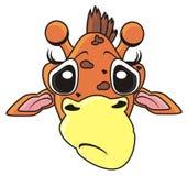 Museau triste de girafe Photographie stock libre de droits
