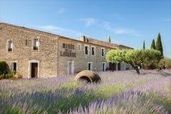 Museet av lavendel i Provence Royaltyfria Bilder
